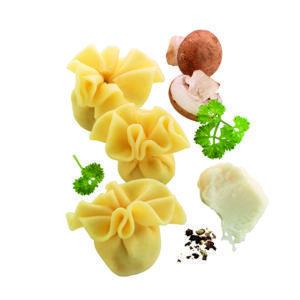 Tipos de pasta SACCOTTINI FUNGHI setas hilcona